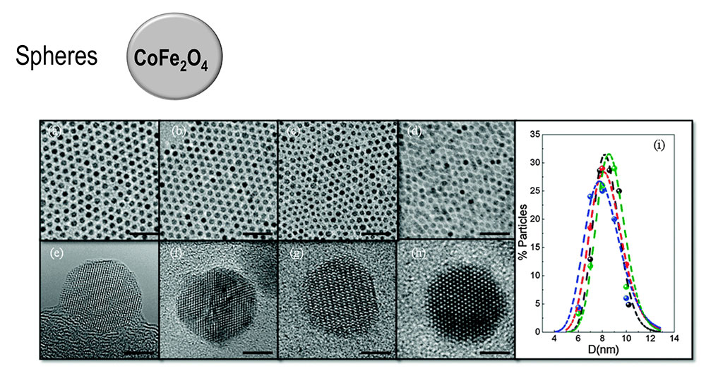 TEM images of the Co-ferrite NPs