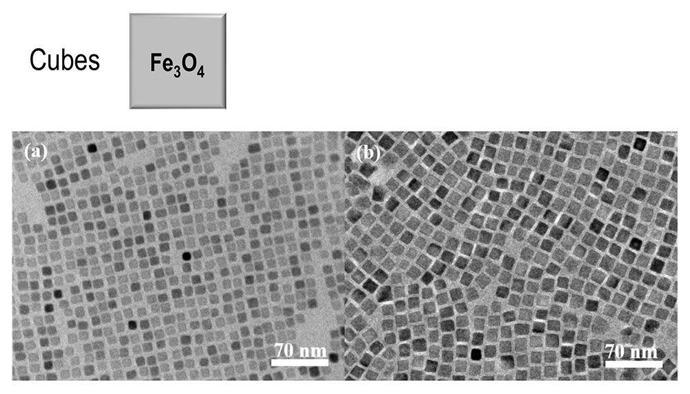 TEM images of square arrays of nanocube