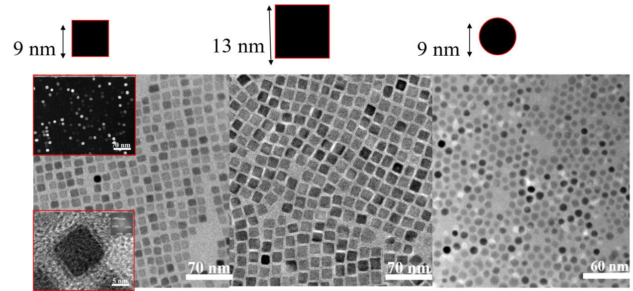 Magnetic properties of cube-shaped Fe3O4 nanoparticles in dilute, 2D, and 3D assemblies